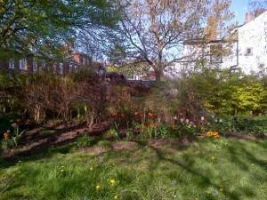 Little Silver garden